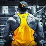 Fitness & Aesthetics