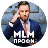 MLM Профи Станислав Санников